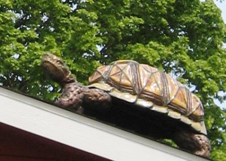 Tortoise by Rod Bearup