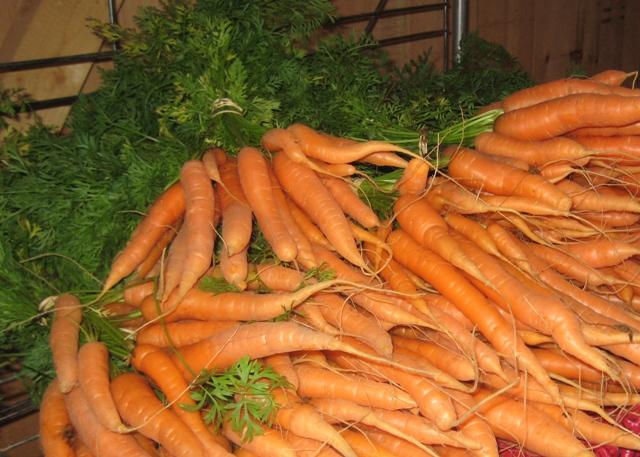 Farm fresh produce | Torch Lake Views
