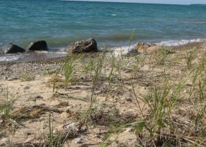 More beach at TBNP