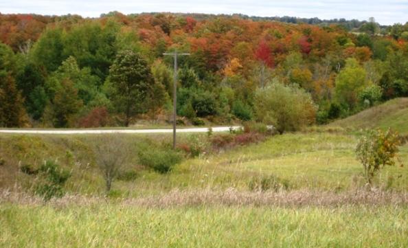 Color begins on Essex Road