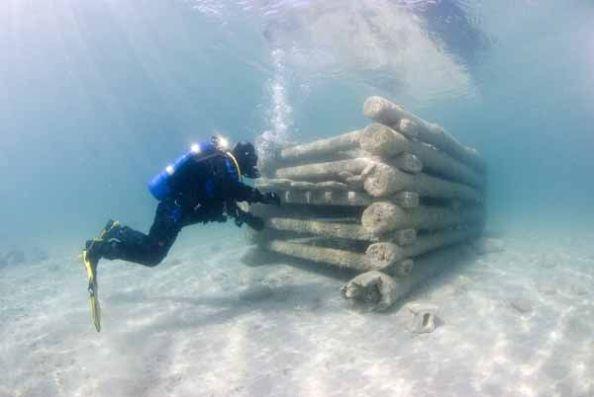 Torch Lake Cribs Diver - (c) Chris Doyal