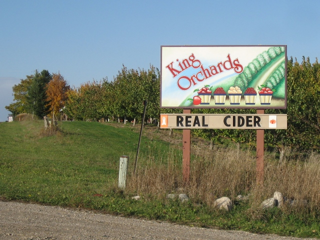 Real Cider Up On The Third Ridge Torch Lake Views