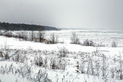 Bay in Winter 013113_0674