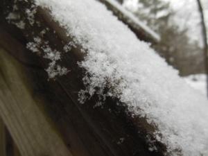Snowfluff