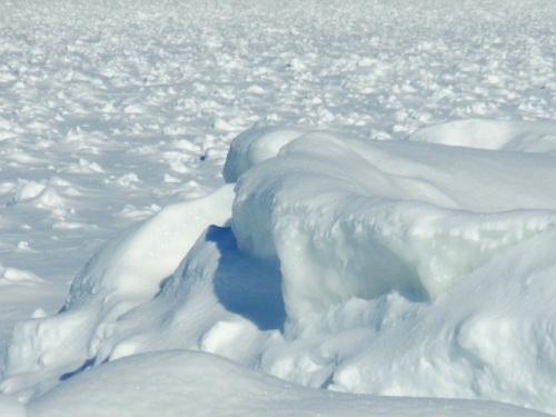 Ice shelf in February