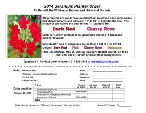 WHHS Geranium Planter Order