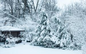 April 15 snow in Ann Arbor