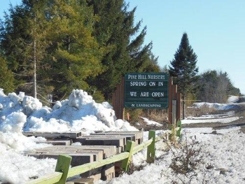 Pine Hill is Open