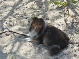 Katie on the beach - Veterans Memorial Park