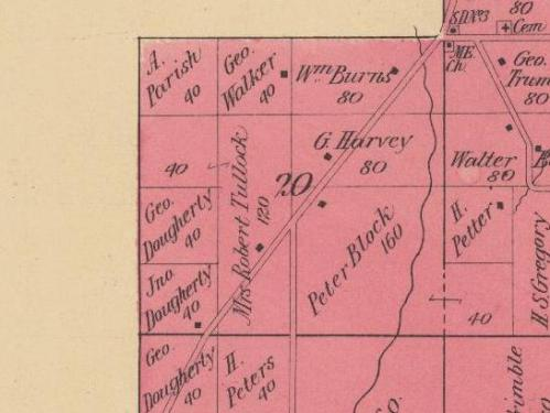 1901 Charlevoix plat map - Marion Township - Burns land in Section 20