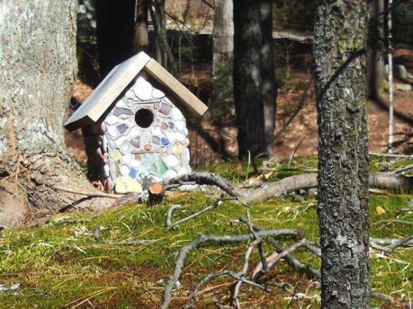 Birdhouse available - cheep
