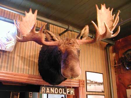 Randolph the Kissable Moose, a Traverse City Tradition