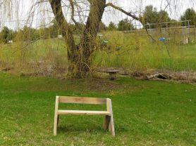 Aldo Leopold-style bench under the spreading willow tree on Guyer Creek, Verdant Ground